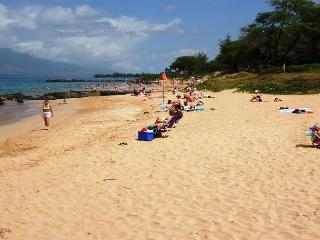 Maui Parkshore #215 - Ocean view, Remodeled 2/2. $120 Spring/Summer Special!, Kihei