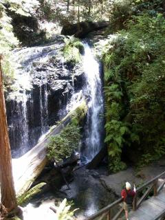 from the cottage walk through the redwoods to the Russian Gulch State Park waterfall