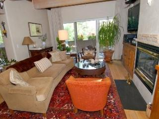 Ketchum 3 BD Home - Walk to Town and on Bike Path