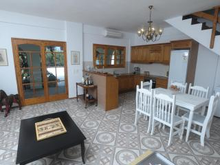 The spacious living room and the open kitchen