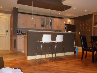 MUST SEE! 3 Bedroom Penthouse downtown Mississauga