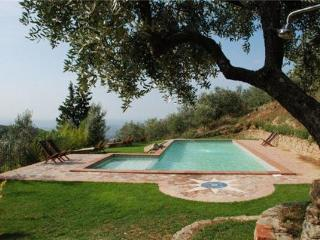 Apartment for 6 persons, with swimming pool , in Pistoia - Lamporecchio vacation rentals