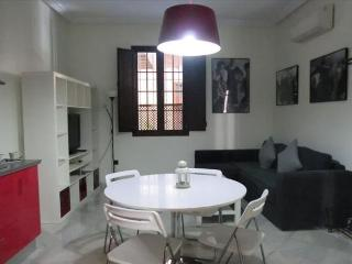 Lovely apartment just in the heart of Seville. 1 Bedroom(4pax), Sevilla
