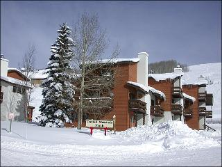Spacious, Three-Story Townhouse - One Block from the Shuttle Stop (1278), Crested Butte