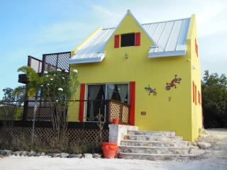 That Lovely Gecko House (GRACE BAY)-Turks & Caicos, Providenciales