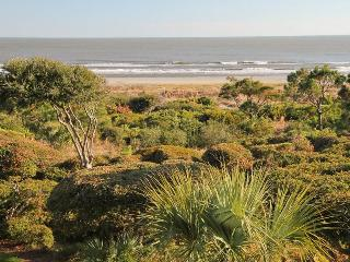 Duneside 1108 - Kiawah Island vacation rentals