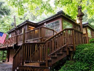Riverfront home w/private hot tub, space for 6!, Rhododendron