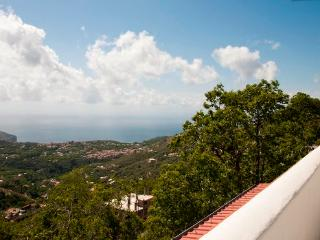 1 Bedroom apartment amazing see view near Sorrento, Vico Equense