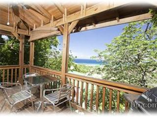 Amazing View AMAZING - Roatan vacation rentals