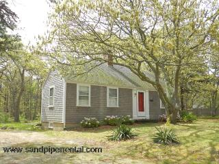 #707 Delightfully decorated & a short distance to Sengy Pond, Edgartown