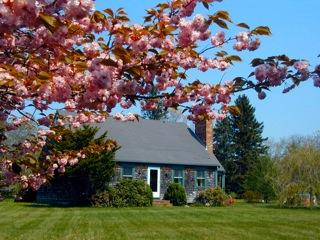 #100019 a full acre with plenty of space to play & explore, West Tisbury