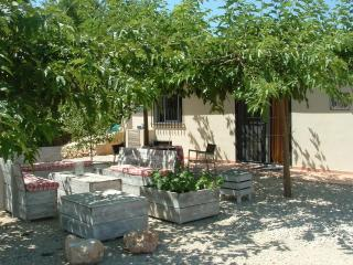 Enjoy the peaceful hills and marvelous views of the Albaida Valley, Valencia