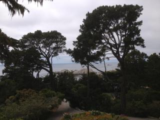 Dramatic Ocean Views - Preeminent Regeneration!!, Carmel