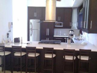 For Rent Luxurious House, San Carlos