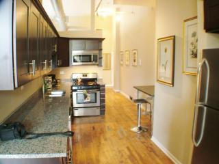 2bd apt in Wicker Park -  Bathhouse, Chicago