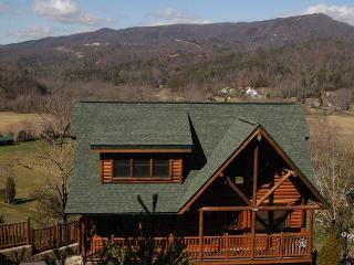 Smoky Mountain Cabin DREAM COME TRUE 555, Pigeon Forge