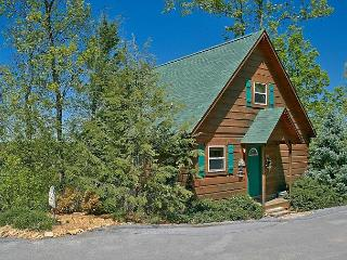 1 Bedroom Cabin Between Pigeon Forge and Gatlinburg with a Mountain View, Sevierville