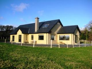 Aunty Bo's - Beautiful spacious home, close to town, pet friendly & views of Ardbear bay, Clifden