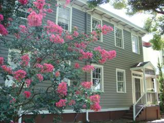 Mimosa House in Historic Savannah