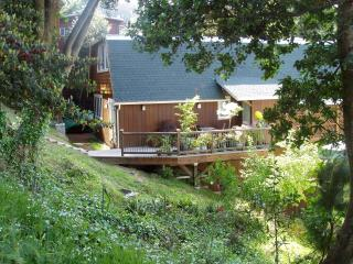 Spacious 3b Retreat Vus 10min2SF  Hike2 2 beachs, Mill Valley