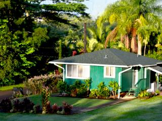 Lux Private Home-Summer special $150/night - Kapaa vacation rentals