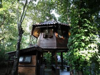 Tree House Nature stay close to city center, Chiang Mai