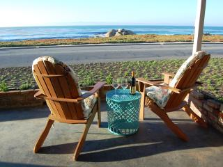 **Free Aquarium Tickets! Oceanfront! Unique Vintage - Pacific Grove vacation rentals