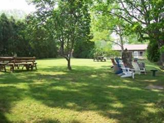 FALL PRICES REDUCED FINGERLAKES  SENECA LAKE NY, Penn Yan