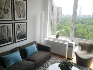 Central Park-Facing Luxury One Bedroom!, New York City
