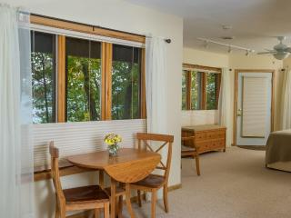 Luxury Iris Apartment on beautiful Seneca Lake, NY, Dundee