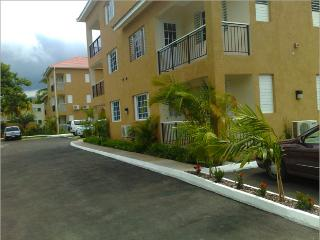1 BD / 1 BR Luxury Apartment - Kingston vacation rentals