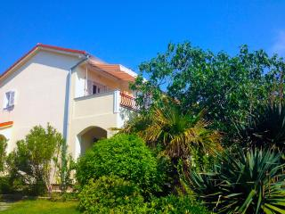 happy sunny holidays at Island Rab / Apartment 1, Rab Island