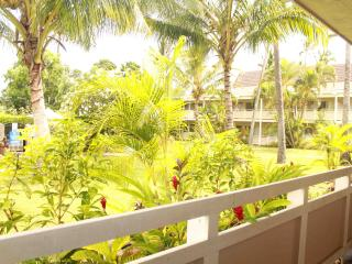 Plantation Hale Unit C6 - Wailua Condo - Kapaa vacation rentals