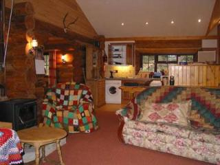 Luxurious log cabin on Blackdown Hills Somerset, Chard