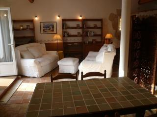 Lovely Apartment, private terrace, swimming pool., Roquefort les Pins