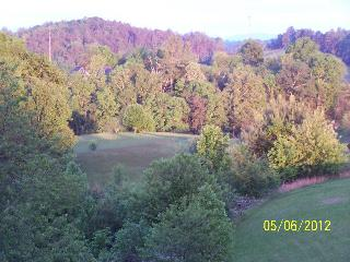 ~Brittany's Mountain Retreat~ near Asheville, NC, Leicester