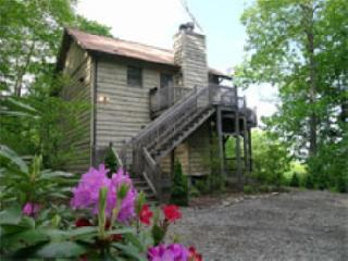 Affordable! Pet Friendly! Mountain Views! Spa!, Maggie Valley