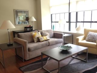 600 Lofts 210. Relax in Luxury, sleeps 6, Philadelphia