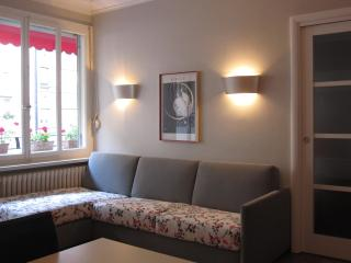 Absolutely lovely & comfortable place-town center, Genève