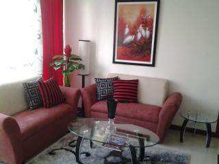 Classy Manila Condo/Apt with Free Airport Pick up