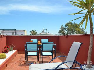 Triana Terrace | One-bedroom with roof-terrace - Seville vacation rentals