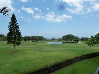 A 210 Ground Level 2 Bedroom 2 Bath  with an ocean view!-WF A210, Waikoloa