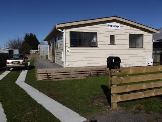 3 BEDROOM COTTAGE STYLE HOUSE - NEAR MT TARANAKI - Taranaki vacation rentals