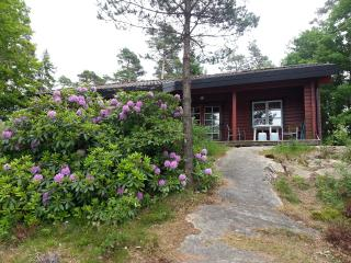 Rent your own lovely cottage on an island 5000 m2 in a very quiet nature., Henan