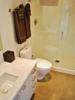 downstairs ensuite bath with full shower