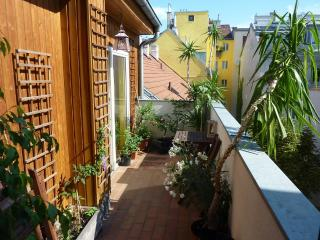 Vienna - Bright & spacious rooftop apartment, Viena