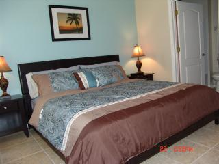 New Opening, Close Disney 4BR with hottub/lakeview - Kissimmee vacation rentals