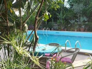 Cottage in a villa with pool and tropical garden, Viagrande