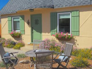 **Free Aquarium Tickets! New Kitchen, Historic! - Pacific Grove vacation rentals