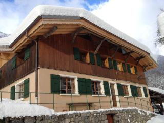 Apartment sleeping 6 Morzine/Montriond, France